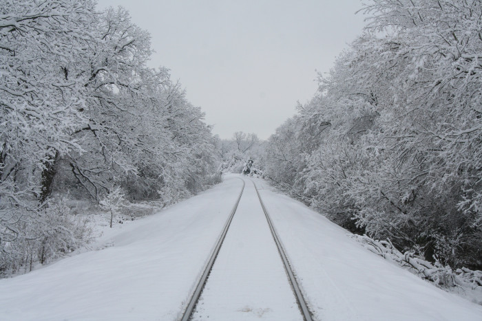 4) I'd love to be the driver of any train that travels on these tracks.  (Waxahachie)