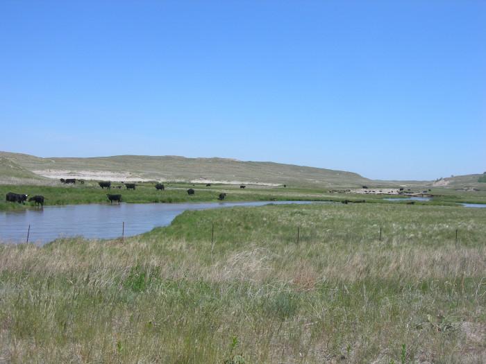 8. North Loup River