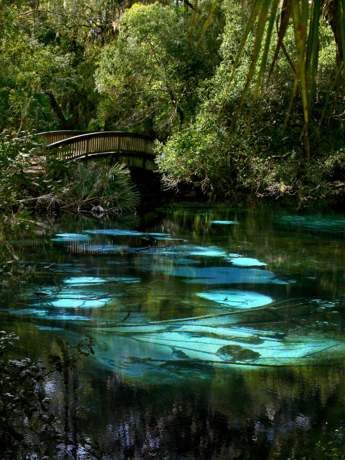 3. And when you get tired of the beach (yeah, right), we've got countless rivers, lakes and crystal-clear springs.