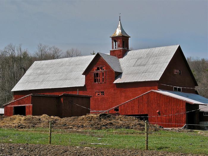 8.  We weren't all raised in a barn...