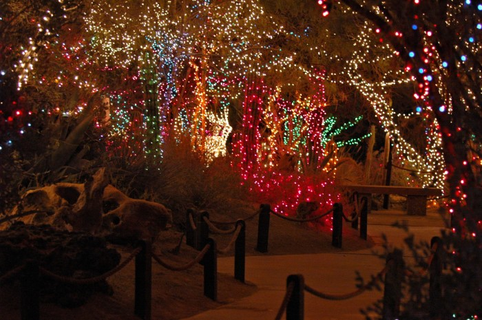 6. During the holidays, the Ethel M Botanical Cactus Garden outshines all other cactus gardens.