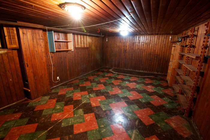 Go To The Basement To Be Surrounded By Some Sweet Wood Paneling And 70s  Flooring.