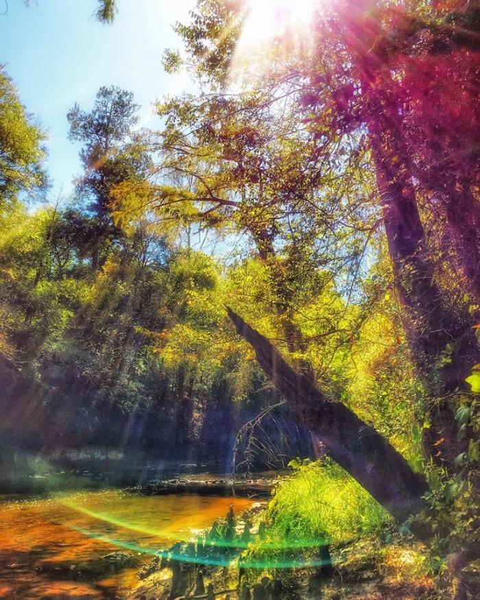 8. Serene Rivers
