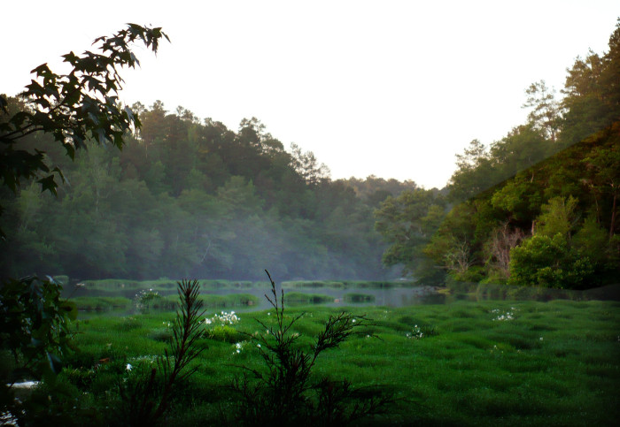 8. The evening mist on the Cahaba River creates a Fairytale scene.