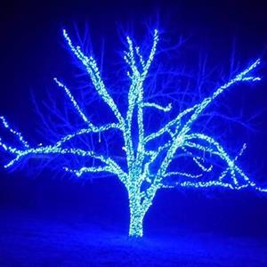 8. Lazy Acres in Lights, Chunky
