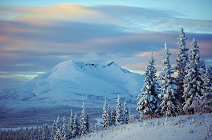 2) A dreamy winter wonderland.