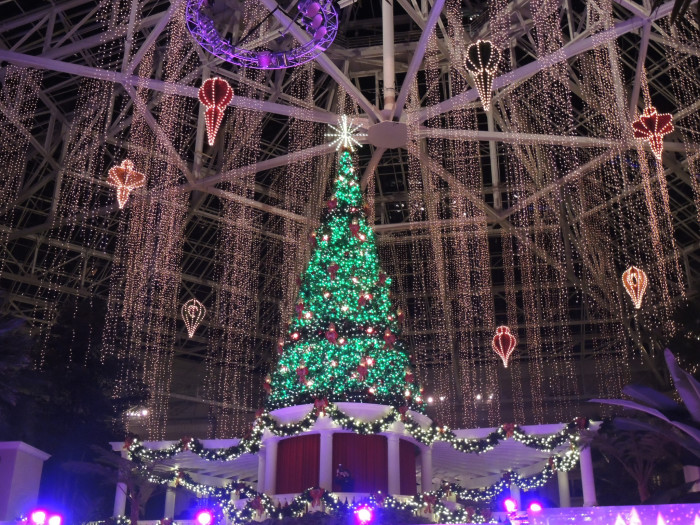 3) This also isn't a home, but the Gaylord Resort in Grapevine is too gorgeous at Christmastime not to include.