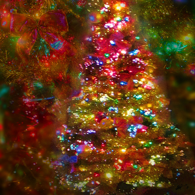 7. Not only is Pennsylvania home to Christmas City, USA, but Indiana County is the Christmas tree capital of the country.