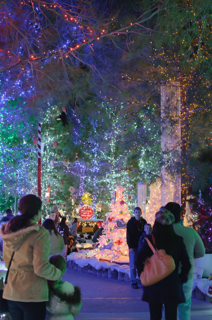 7. Magical Forest at Opportunity Village - Las Vegas