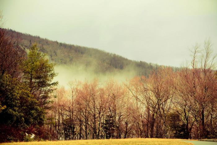 5. Lingering winter fog on the Blue Ridge Parkway.