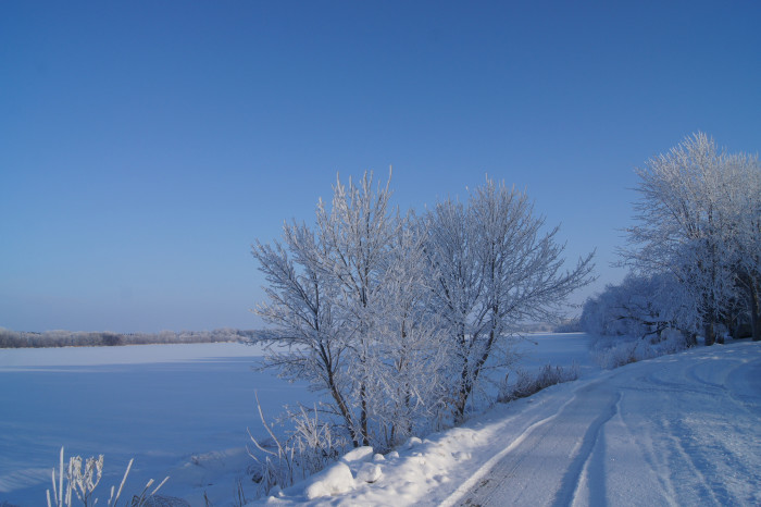 6. This frosty morning in Kandiyohi County is stunning!