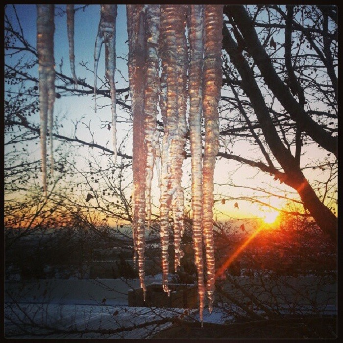 12. Icicles in Reno, Nevada