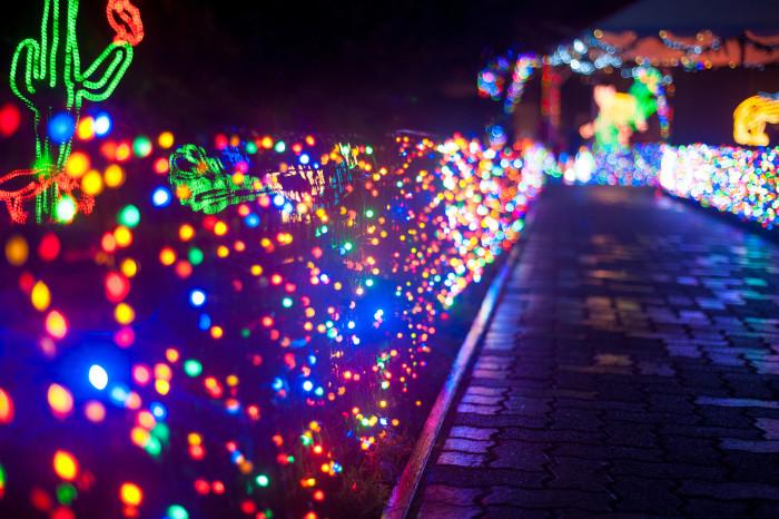 8. Zoo Lights.