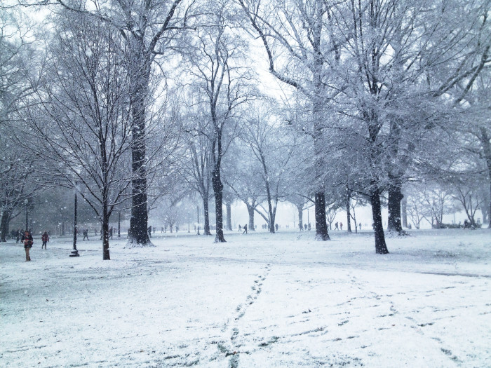 3. The University of Alabama, in Tuscaloosa, on a snowy day in January 2013.