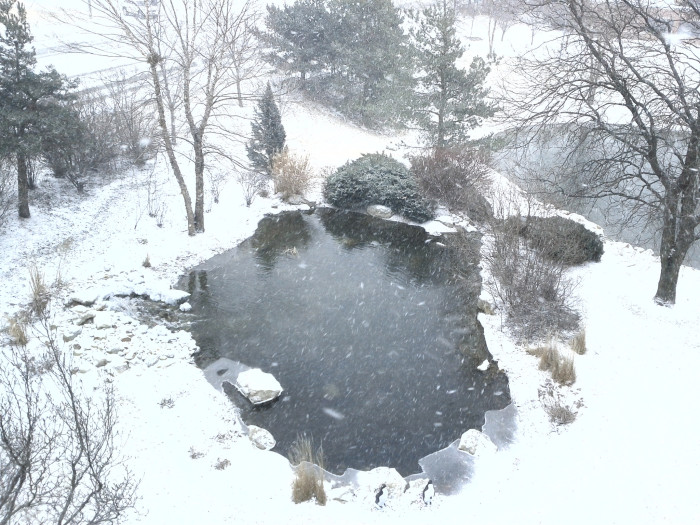 19. Love this elevated look at a frigid pond in the winter snow.