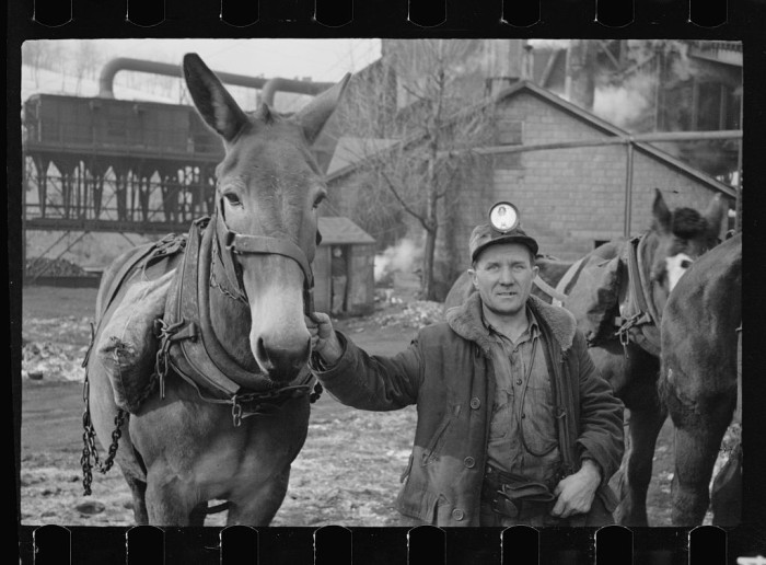 2. A typical workman in 1935 had quite the accessory.
