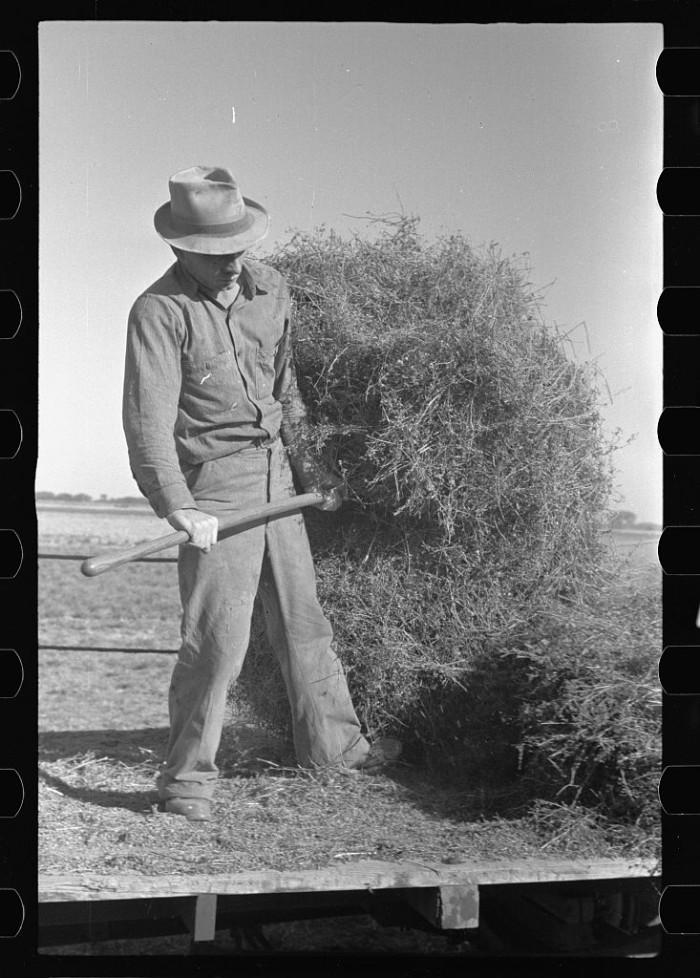 "10. ""Jack Gardinier who has bought a farm under the tenant purchase program. Ottawa County, Kansas."" (1938)"