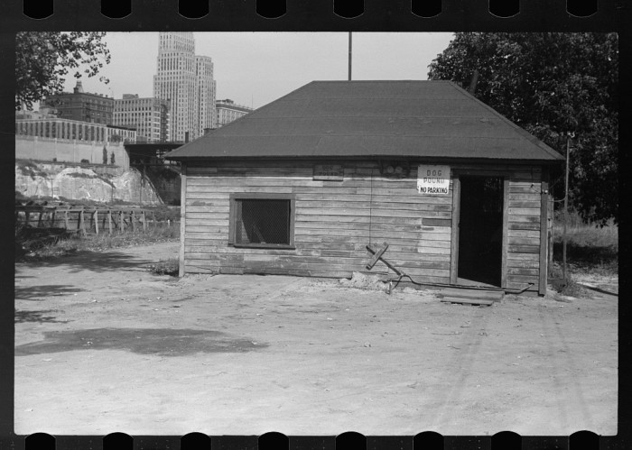 8. This is St. Paul's dog pound circa 1939. Definitely not like an animal shelter you'd see today!