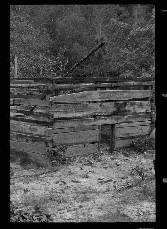 1. A trap used to catch wild hogs in Irvin County, GA - August 1935