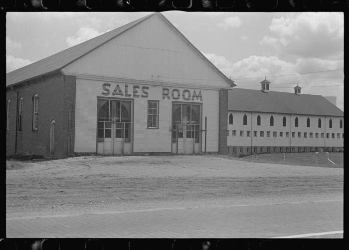 """Fields and farm buildings at Hartman Farms, near Columbus, Ohio."""
