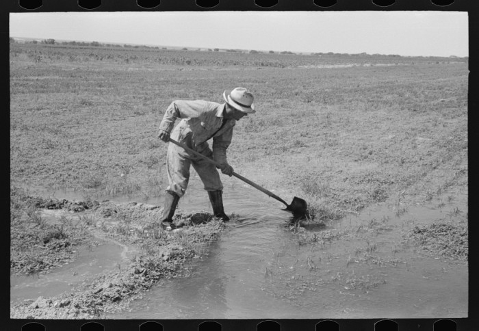 """1. """"Mr. Johnson, FSA (Farm Security Administration) client with part interest in cooperative well, irrigating his fields near Syracuse, Kansas."""" (1939)"""