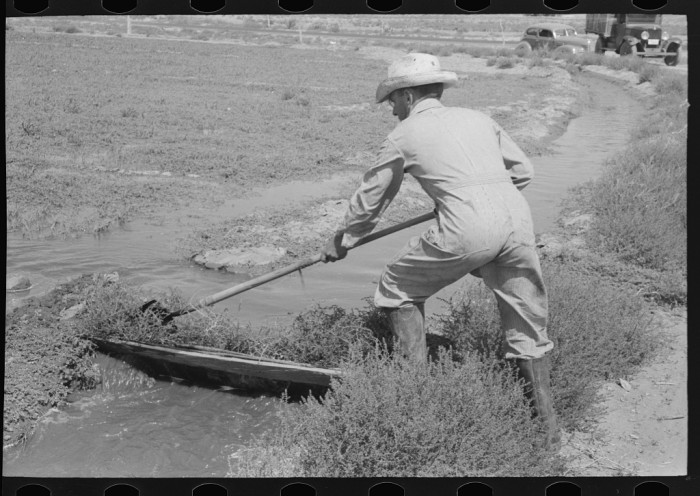"""9. """"Mr. Johnson, FSA (Farm Security Administration) client with part interest in cooperative well, irrigating. He just built himself a small dam of board and tumbleweed."""""""