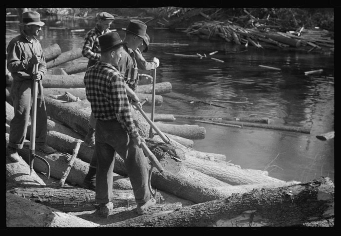 20. These lumberjacks are rolling logs into the river near Littlefork.