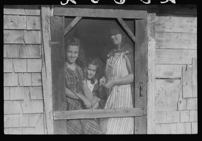 1. Farm Security Administration client, Mrs. Patrick Dumond, a potato farmer with two of her children at home. (Lille, 1940)