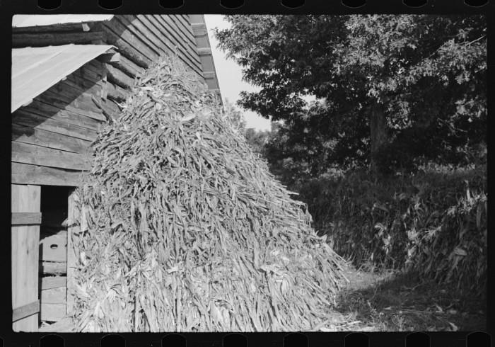 16. Against the barn.