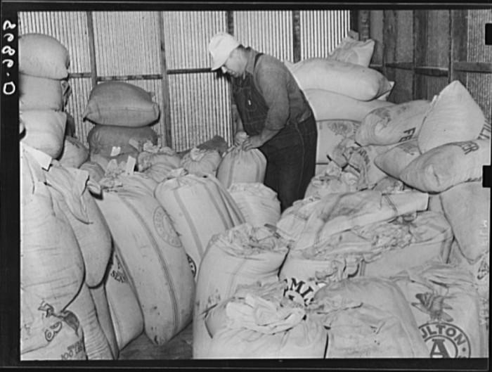 "13. ""Interior of farmer's union co-op elevator. Centralia, Kansas."" (1938)"