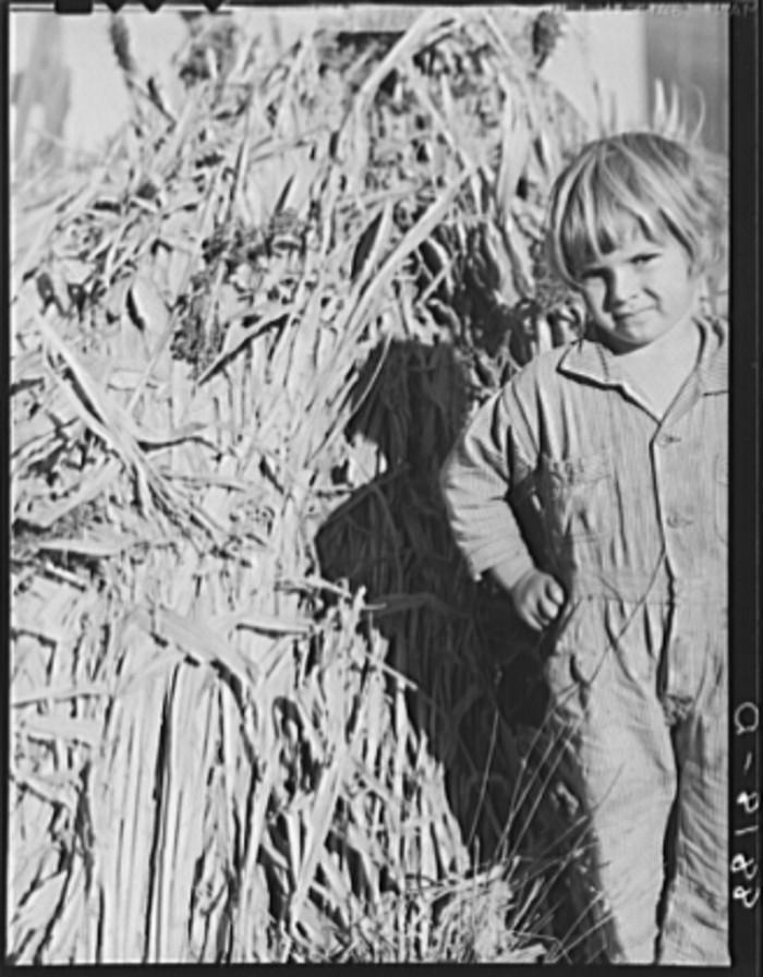 "12. ""Farmer's daughter. Republic County, Kansas."" (1938)"