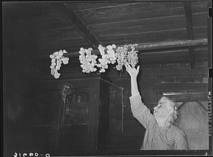 9. People would grow their own garlic—And keep it stored in the rafters to preserve it!