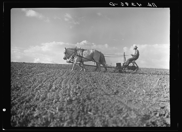 1. Farming takes on an old-time feel.