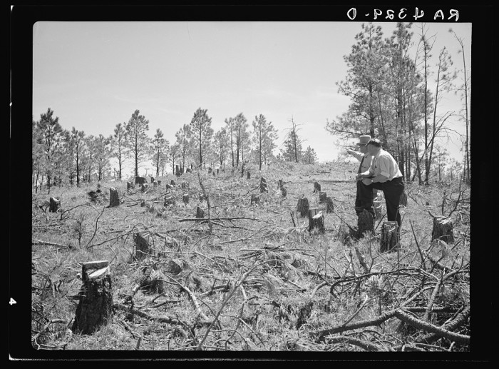 4. These men inspect land that will soon be reseeded.