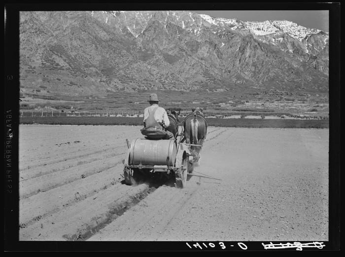 1. Cache County, 1940