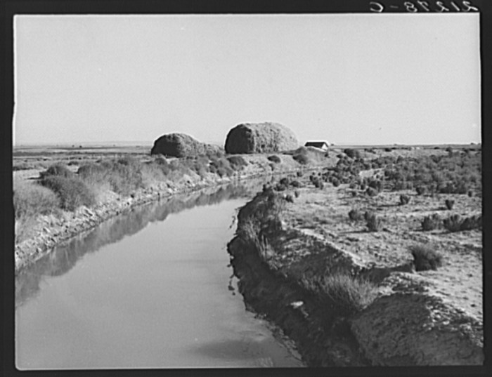 6. An irrigation canal at Dead Ox Flat, 1939.