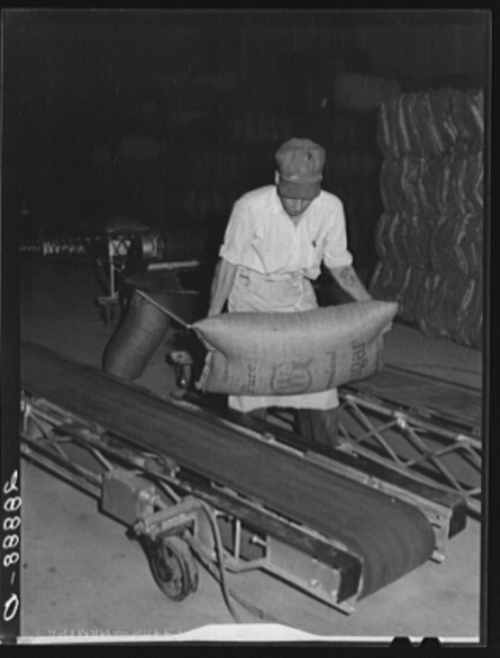"6. ""Conveyors used for storing bags of sugar. Brighton, Colorado."" (1939)"