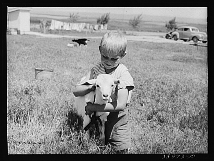 9. A boy and his pet goat, 1941.