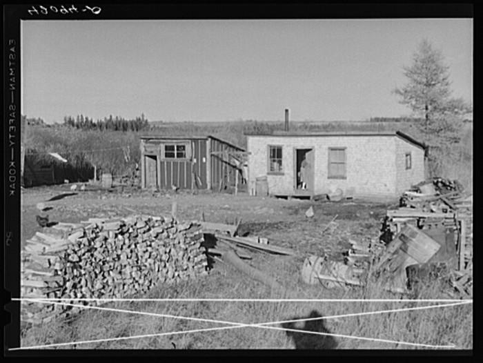 20. Rural living with firewood gathered for winter. (Van Buren, 1940)