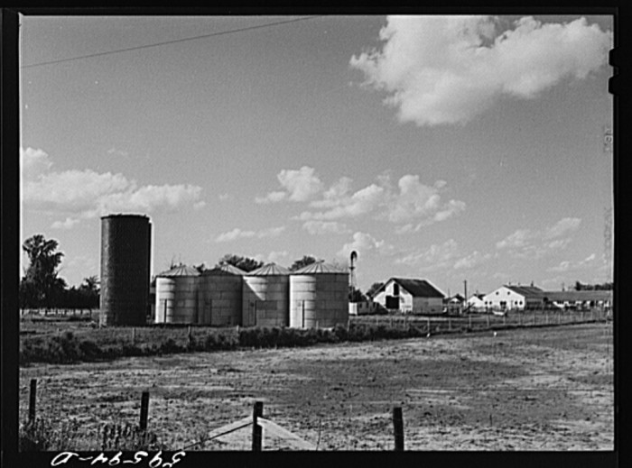 7. A silo and grain storage in Waterloo, 1941.