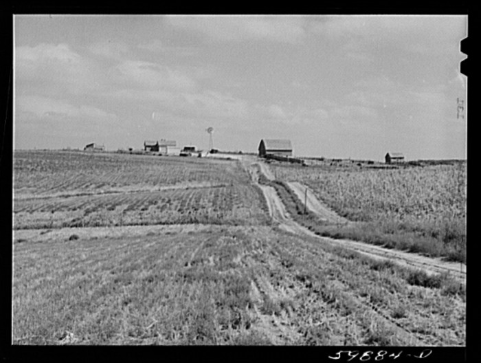 1. Imagine the long walk up the dusty, windy road to this ranch in Dawson County. Marion Post Wolcott captured this photograph in 1941.