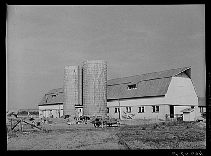 13. Here is another dairy barn in Wabash.