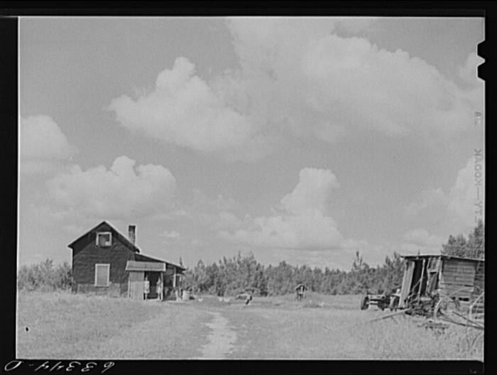7. This is the farm of a FSA (Farm Security Administration) rehabilitation borrower on cut-over land in Itasca County.