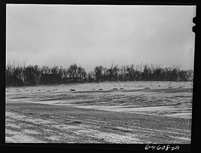 2. The snow blowing around this farm in McLeod County is a reminder of Minnesota's unforgiving weather.