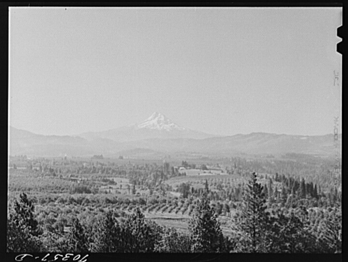 19. Hood River Valley, 1941.