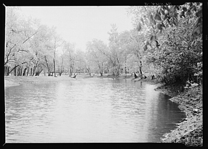 7. This is a marsh near near Winona, Indiana that a lot of people used for bathing in 1936.