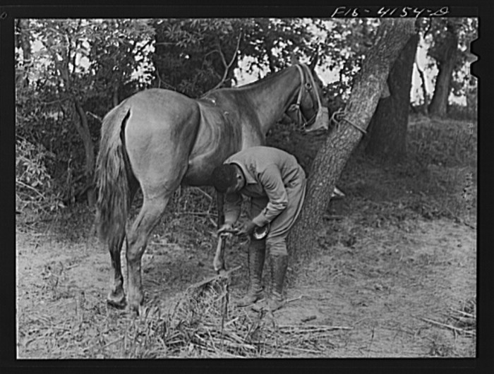 """5. """"Shoeing a horse while in bivouac during a field problem of the cavalry."""""""