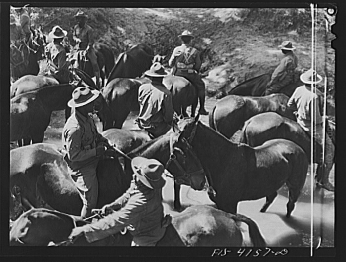 """6. """"Watering the horses during a field problem of the cavalry."""""""