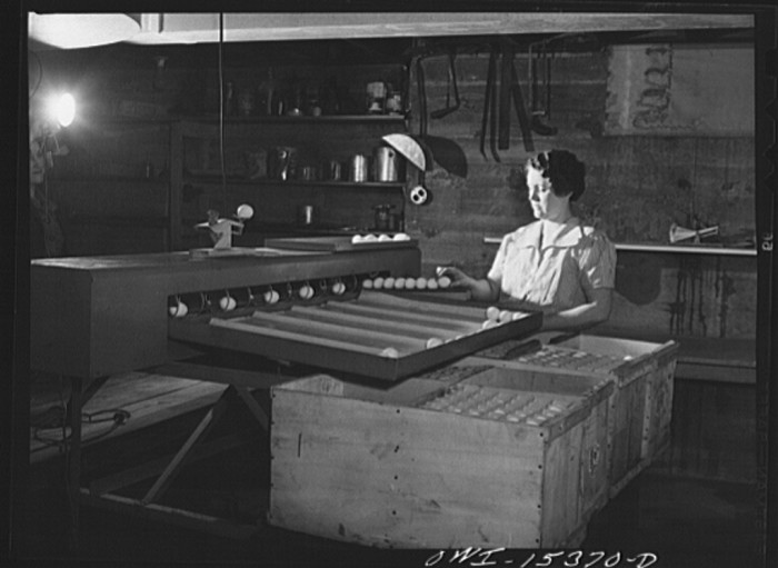 """""""Rio Grande, Gallia County, Ohio. Mrs. Younkers grading eggs. There are three boys in this family who will also help with farm work."""""""
