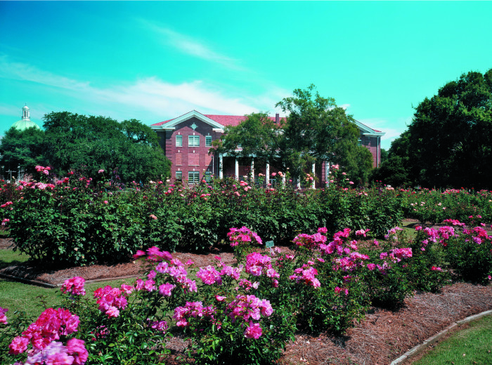 9. The University of Southern Mississippi's All-American Rose Garden, Hattiesburg
